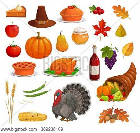 Thanksgiving Autumn Holiday Vector Icon Set With Cartoon Turkey, Food And Pilgrim Hat. Harvest Pumpk