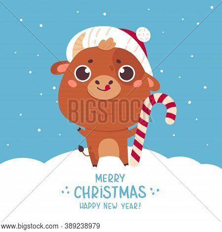 Cute Cartoon Ox With The Christmas Candy. Design For Greeting Cards, Advertising, Banners, Prints. X