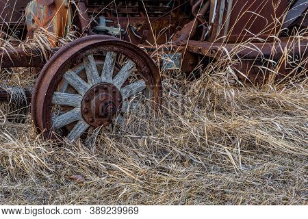 Wooden Spokes To A Vintage Car Buried In Tall Grass On The Prairies In Saskatchewan
