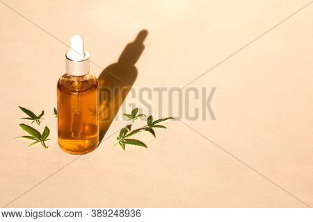 Glass Bottle And Dropper Cbd Oil, Thc Tincture And Cannabis Leafs On Pastel Background. Laboratory P