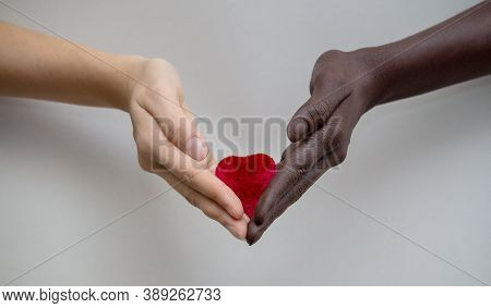 Black And White Hands Holding Red Heart On A Gray Isolated Background. The Concept Of Inter-racial F