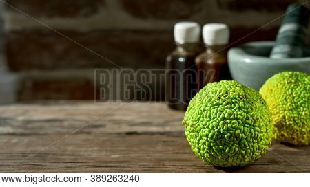 Fruit Of The Maclura Pomifera Tree Or Horse Apple On A Wooden Table. Adam's Apple For Medical Use, A