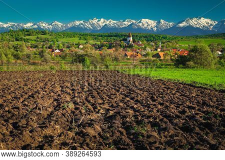 Cultivated Farmlands Near Saxon Hosman Village And Spectacular Snowy Mountains In Background, Sibiu