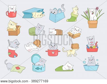 Cat In Cups. Relaxing Cute Little Kitty Hide In Cup Or Slippers Vector Funny Illustrations. Cute Kit