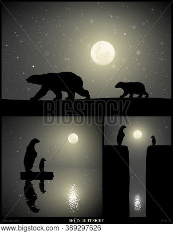 Polar Bears Family Walking In Snow On Moonlight Night. Animal Mother And Baby Silhouettes On Edge Of