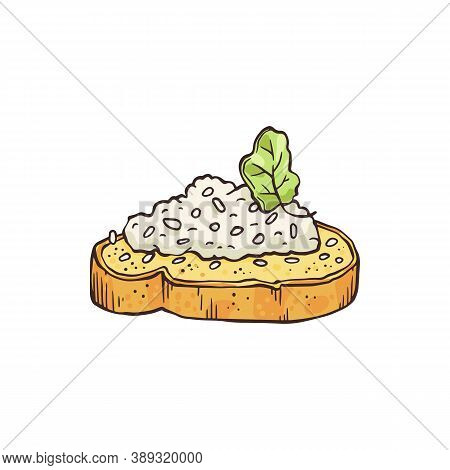 Vector Isolated Hand Drawn Illustration Of Sandwich Or Appetizer.