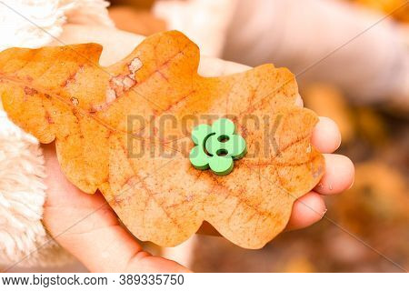 Autumn Nature Smile, Care And Support. Fall Season Oak Orange Leaf In Child Palm Hand With Green Woo