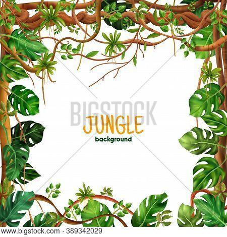 Decorative Tropical Rianforest Climbing  Liana Square Frame With Jungle Creeping  Vine Plants Leaves