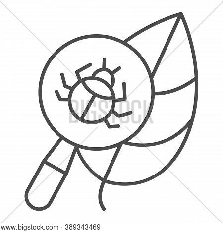 Beetle Under Magnifying Glass On Leaf Thin Line Icon, Allergy Concept, Insect Under Magnifier Sign O
