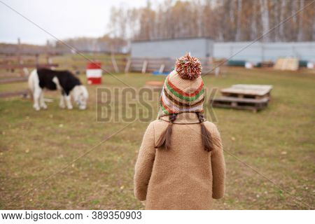 Horizontal back view shot of unrecognizable little girl with two plaits wearing warm coat and colourful knit cap