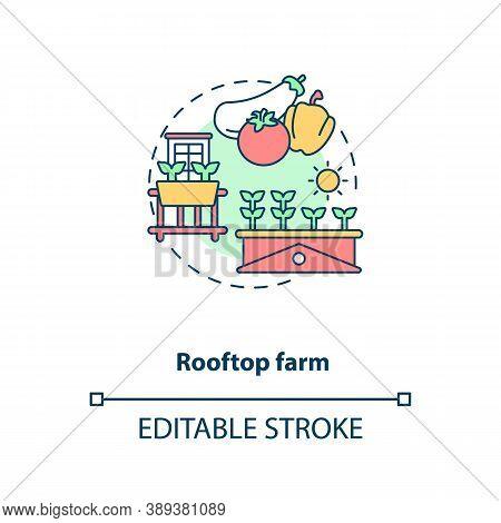 Rooftop Farm Concept Icon. Futuristic Gardening Idea. City Rooftops Food Fields. Urban Farming Idea