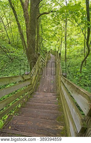 Wooden Stairway Through A Verdant Forest In White Pines Statea Park In Illinois