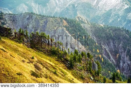 The Mountains Of The Sayans. The Nature Of The Mountains Is Sayan. Vegetation In The Mountains