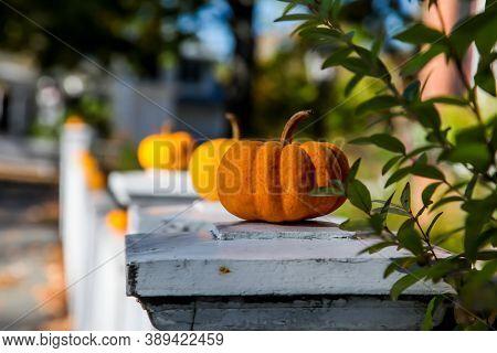 Little pumpkins outdoor decoration for Halloween