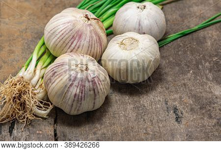 Garlic Bulb. Garlic And Leaves. Seasoning. Condiment. Culinary Delicacy. Aged Wood Background.