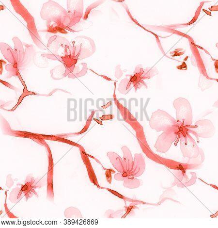 Cherry Blossom Illustration. Rose Background. White Apple Repeat. Cherry Blossom Illustration. Abstr