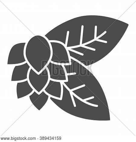 Leaves And Hops Solid Icon, Craft Beer Concept, Beer Hop Sign On White Background, Hops Plant Icon I
