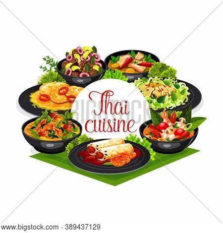 Thai Cuisine Vector Spring Rolls, Calamari Salad And Tom Yam Kung, Chicken With Basil, Pork Tenderlo