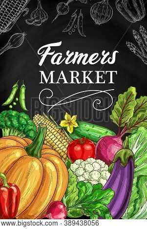 Farmers Market Vegetables Chalkboard Banner. Cucumber, Beetroot And Salad, Tomato, Pea And Corn, Cau