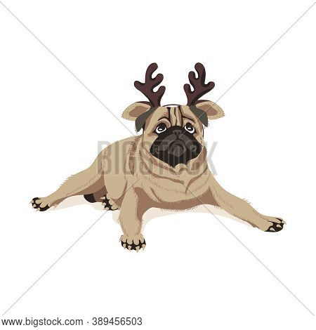 Cute Pug Dog In Headband With Deer Horns. Adorable Friendly Purebred Chubby Pet Animal Wearing Head