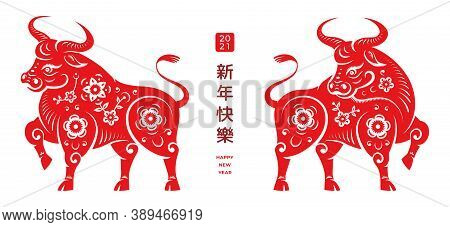 Happy Chinese New Year Text Translation. 2021 Year Of Metal Ox Lunar Holiday Design. Vector Bull Ani