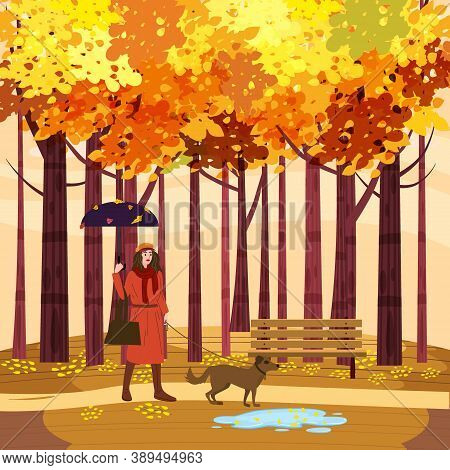 Autumn Park Young Woman Walks With Dog, Yellow Orange Red Foliage Trees, Walkway Bench. Fall Mood Ou