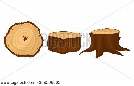 Stub And Cross Section Timber As Material For Carpentry Vector Set