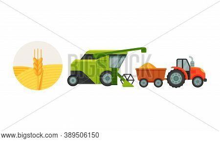 Combine Reaping And Harvesting Grain Crops From Field For Bread Production Vector Set