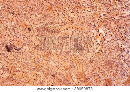 Brown Marble Texture.
