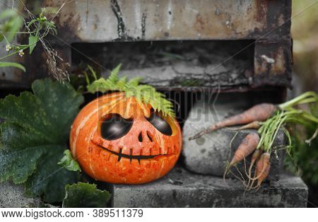One Halloween Pumpkin On An Autumn Day. Great Spooky Symbol Of Halloween. Big Spooky Helloween Symbo