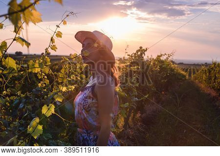Beautiful Woman In Vineyard In Nature. Happy People Lifestyle. Woman In Vineyard In Sunset. Nature L