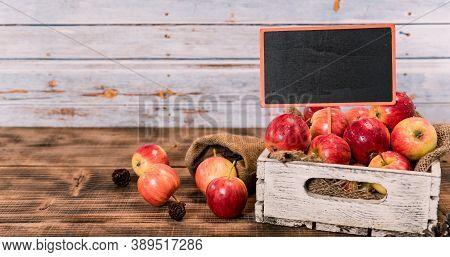 Organic Ripe Red Apples In Wooden Box. Fall Harvest Cornucopia In Autumn Season. Fresh Fruit With Wo