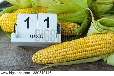 Corn Cob On A Wooden Background. June 11, National Corn On The Cob Day.