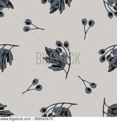 Seamless Pattern With Hand Drawn Stylized Hawthorn Stock Illustration