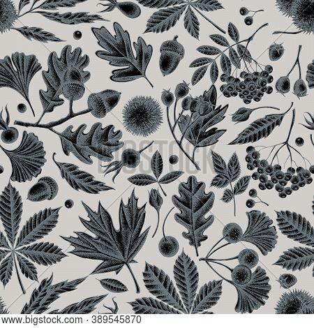 Seamless Pattern With Hand Drawn Stylized Fern, Dog Rose, Rowan, Ginkgo, Maple, Oak, Horse Chestnut,