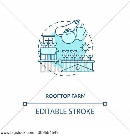 Rooftop Farm Concept Icon. Futuristic Gardening Options. City Buildings Rooftops Food Fields. Urban