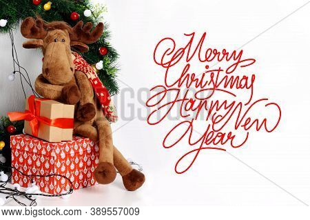 Christmas Card. Merry Christmas And Happy New Year 2021. Text With Christmas Evergreen Branches, Chr