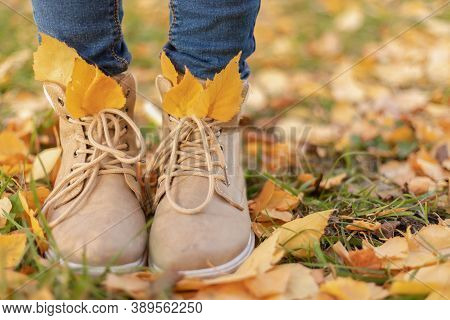 Women's Feet In Autumn Brown Shoes And Blue Jeans In Autumn Yellow Leaves, Autumn Fashion, Hipster S