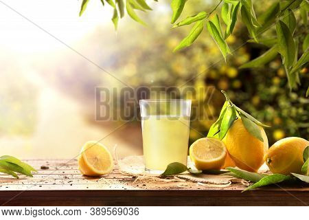 Freshly Squeezed Juice On A Wooden Table Full Of Lemons With Lemon Trees In The Background And Sunli