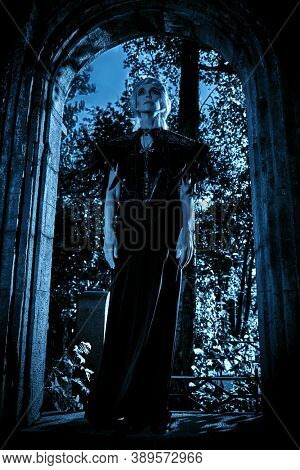 An aristocratic old widow woman with beautiful gray hair and a rich black dress posing in a crypt in a cemetery. Black Widow. Atmosphere of mysticism. Halloween.