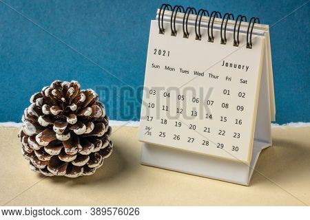 January 2021- spiral desktop calendar against handmade paper with a decorative frosty pine cone, season,  time and business concept