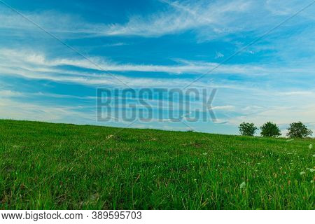 Green Field Simple Background Nature Landscape Scenic View With Unfocused Tree On Horizon Line In Su