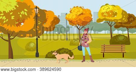 Autumn Park Woman Walks With Dog, Yellow Orange Red Foliage Trees, Walkway Bench. Fall Mood Outdoor