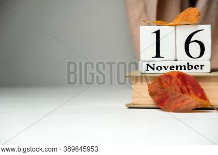 Sixteenth Day Of Autumn Month Calendar November With Copy Space.