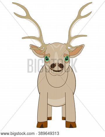Ungulate Animal Deer On White Background Is Insulated