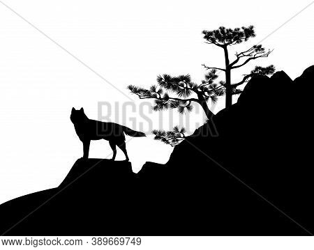 Wild Wolf Standing At Rock Cliff With Conifer Tree - Wilderness Scene Black And White Vector Silhoue