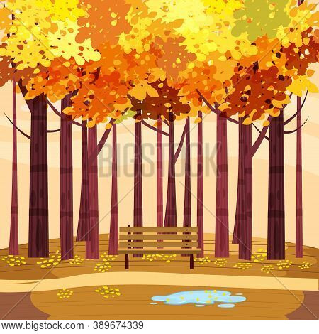Autumn Park Landscape Yellow Orange Red Foliage Trees, Walkway Bench. Fall Mood Outdoor Cityscape. V