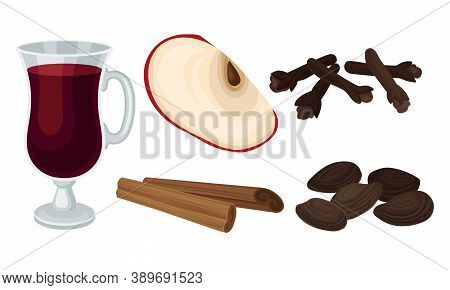 Ingredients For Mulled Wine Or Wine With Cardamon And Apple Vector Set