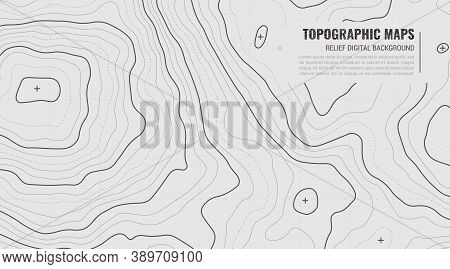 Stylized Height Of Topographic Contour In Lines. Concept Of A Conditional Geography Scheme And Terra