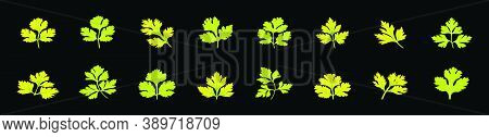 Set Of Cilantro Leaves Cartoon Icon Design Template With Various Models. Vector Illustration Isolate